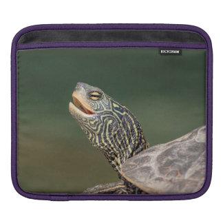 Schildkröte auf LaChute Fluss Sleeve Für iPads