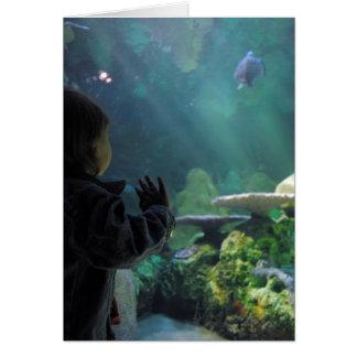 Schildkröte-Behälter-Zuschauer Karte