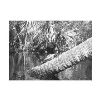 Schildkröte, die auf einem Klotz über Fluss Leinwanddruck