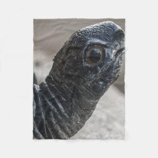 Schildkröte Fleecedecke