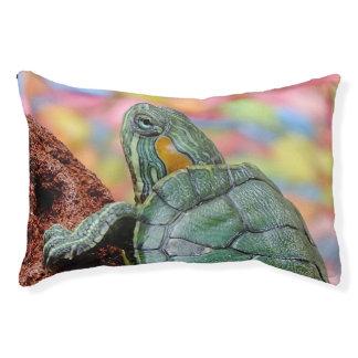 Schildkröte Haustierbett