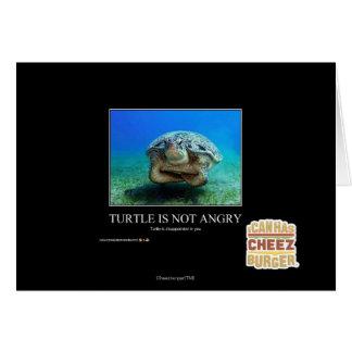 Schildkröte ist nicht verärgert karte