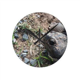 Schildkröte-Kopf Runde Wanduhr