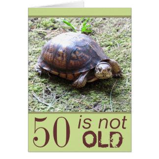 Schildkröte - nicht alt - Geburtstag Grußkarte