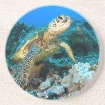 Schildkröte-Paare Untersetzer