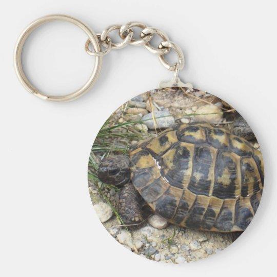 Schildkröte Schlüsselanhänger