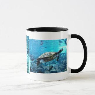 Schildkröte und Masse der Fische Tasse