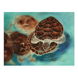 Schildkröte-Zeit-Postkarte Postkarte