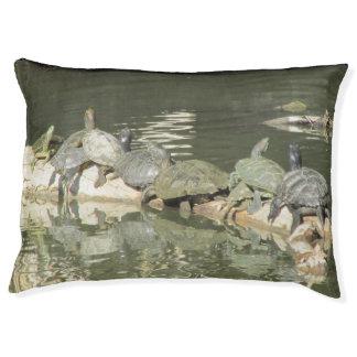 Schildkröten Haustierbett