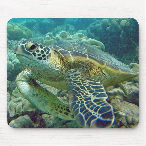 Schildkröten in Hawaii Mauspads