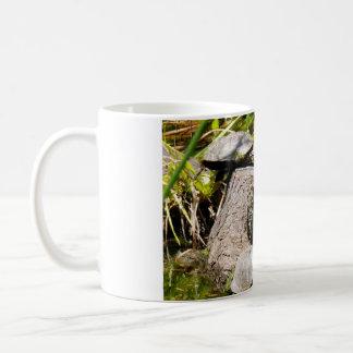 Schildkröten Kaffeetasse