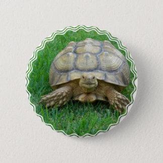 Schildkröten-runder Knopf Runder Button 5,1 Cm