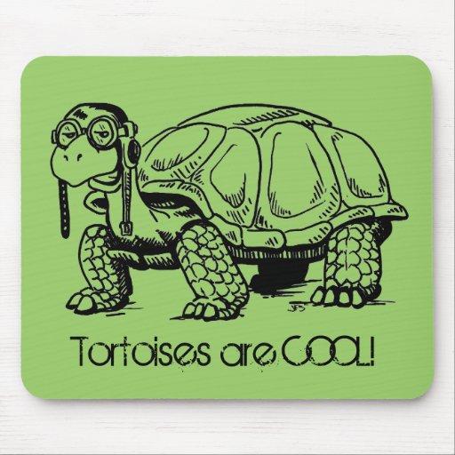 Schildkröten sind COOL! Mousepad