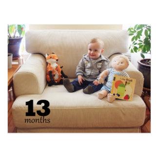 Schilf - 13 Monate Postkarte