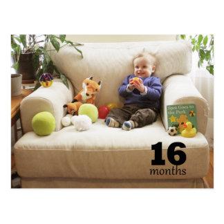 Schilf - 16 Monate Postkarte