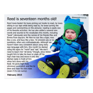 Schilf - 17 Monate (Schneeaufzeichnung!) Postkarte