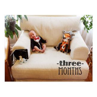 Schilf - 3 Monate Postkarte