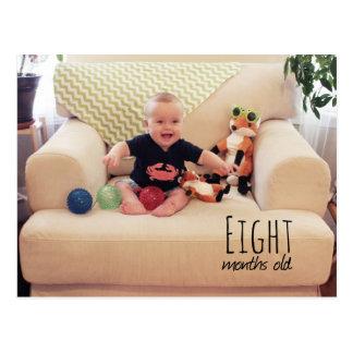 Schilf - 8 Monate Postkarte