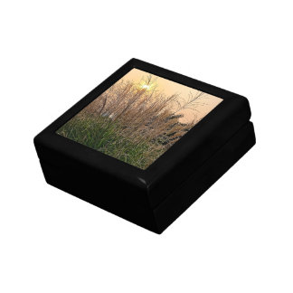 Schilf am Sonnenuntergang Geschenkbox
