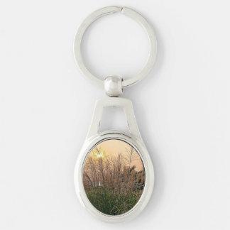 Schilf am Sonnenuntergang Schlüsselanhänger