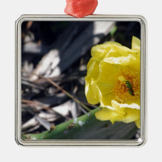 schillernde Biene auf nopales Blume Quadratisches Silberfarbenes Ornament