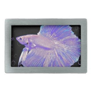 Schillernde lila kämpfende Fische Rechteckige Gürtelschnallen