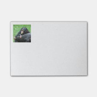 Schimpanse 005 post-it klebezettel