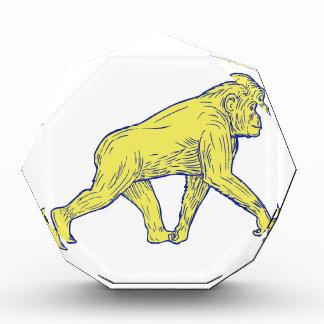 Schimpanse-gehendes Seiten-Zeichnen Auszeichnung