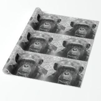 Schimpanse-Gesicht, großer Charakter, Schwarzweiss Geschenkpapier