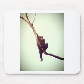 Schimpanse im Baum Mauspad
