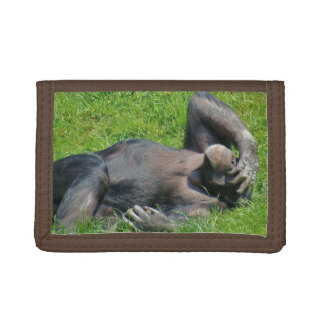 Schimpanse im Gras - Nylongeldbörse