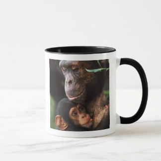 Schimpanse-Mutter, die Baby ernährt Tasse