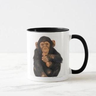 Schimpanse (Pantroglodytes) Tasse