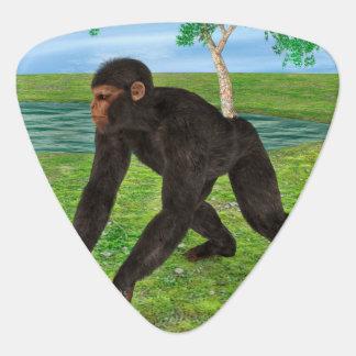 Schimpanse Plektrum