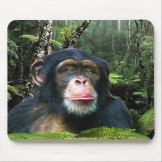 Schimpanse u. Regenwald Tier-Unterstützung Mauspads
