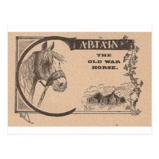 Schlachtross Kapitän-The Old Postkarte