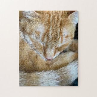 Schlafen orange Tabbykatze Puzzle