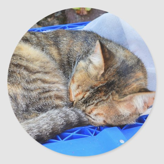 Schlafende Katze Runder Aufkleber