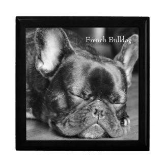 Schlafenfranzösische Bulldogge Erinnerungskiste