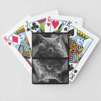 Schlafengraue Katze Bicycle Spielkarten