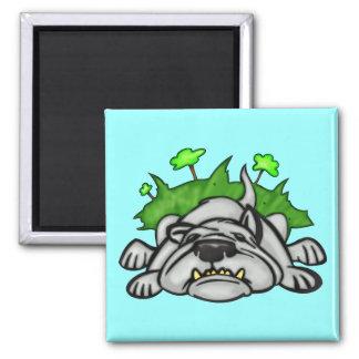 Schlafenhund Quadratischer Magnet