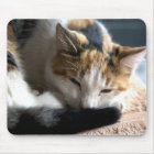 Schlafenkaliko Mousepad