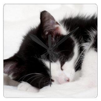 Schlafenkätzchen Quadratische Wanduhr