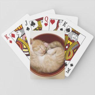 Schlafenkätzchen Spielkarten