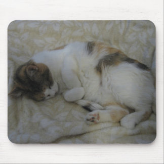 Schlafenkatze Mauspads