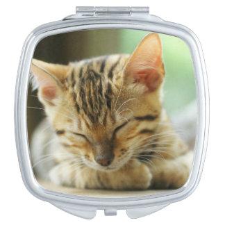 Schlafenkleine Baby-Miezekatze Taschenspiegel
