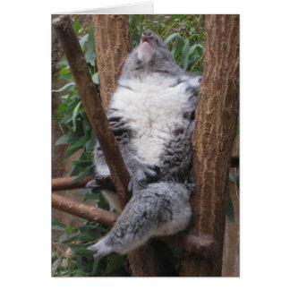 Schlafenkoala-Bär Karte