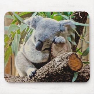 Schlafenkoala-Bär Mousepad