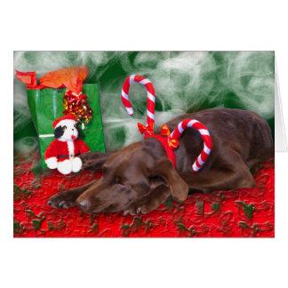 Schlafenschokoladen-Labrador-tragende Karte