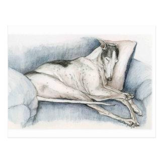 Schlafenwindhund-Hundekunst Poscard Postkarte